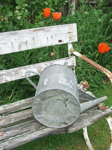 Galvanised Wtering Can