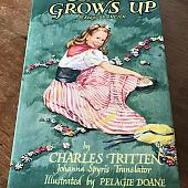 Heidi Grows Up Book